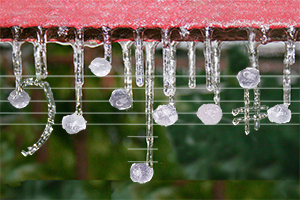 Frozen Music Notes