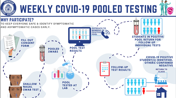 Pooled Testing Process Infographic