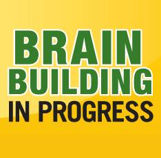 Brain Building In Progress